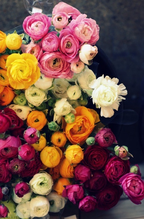 flowers-whatwouldgwynethdo.jpeg