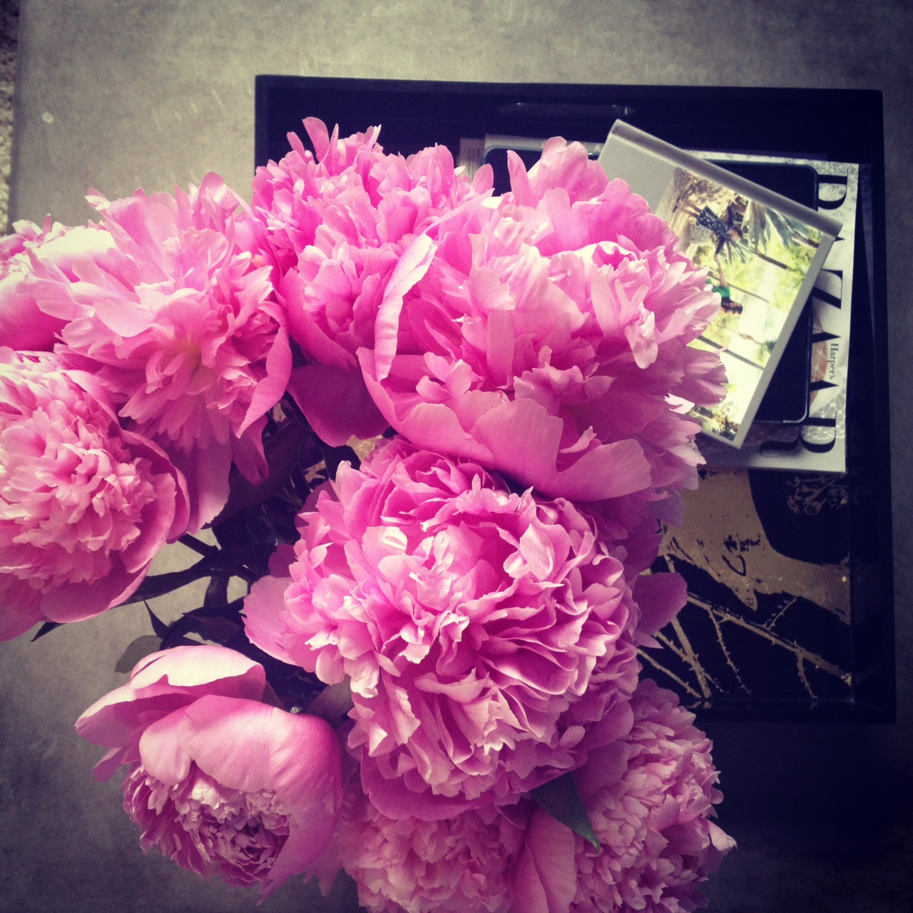 peonies-whatwouldgwynethdo
