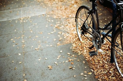 RidingABike-WhatWouldGwynethDo